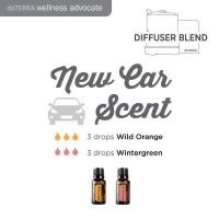 NewCarScent