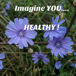 Imagine YOU Health