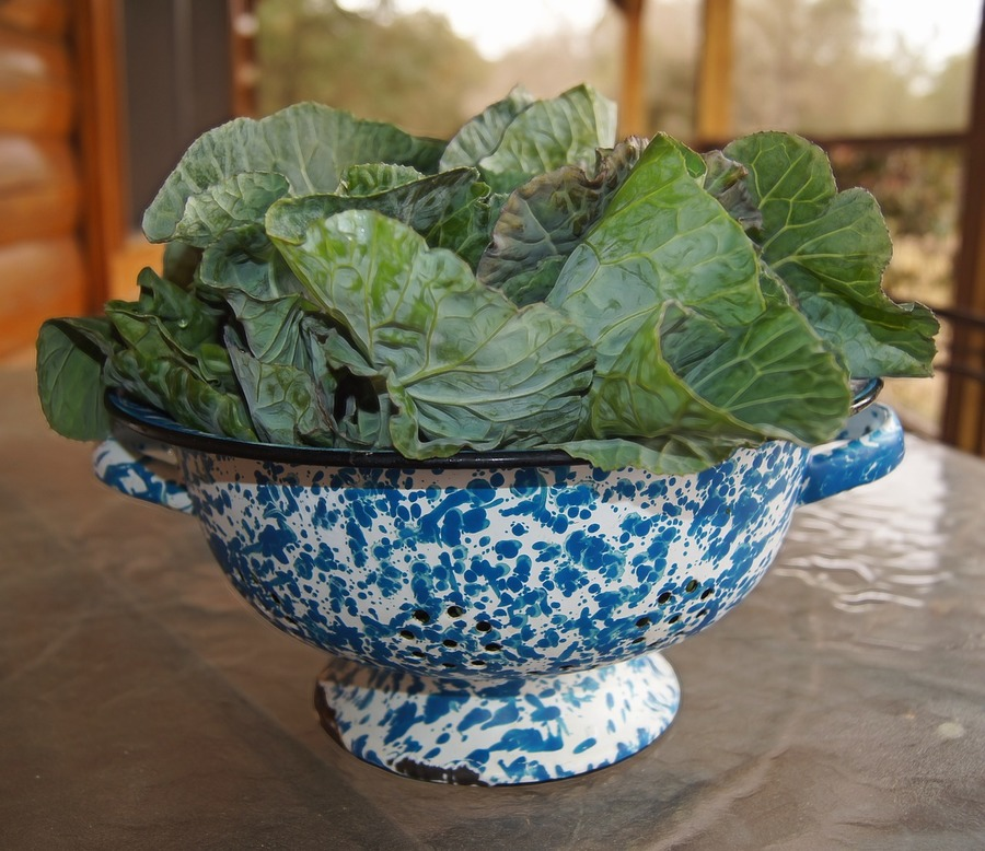 Eating lots of leafy greens is a great way to get your daily vitamin k1