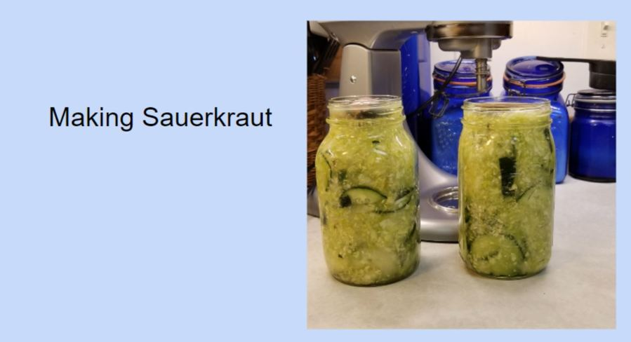 Making Homemade Sauerkraut