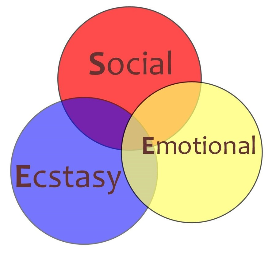 Social Ecstasy Emotional Diagram