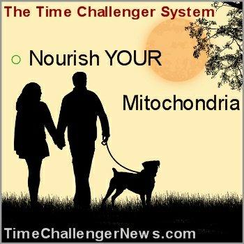 Nourish Your Mitochondria